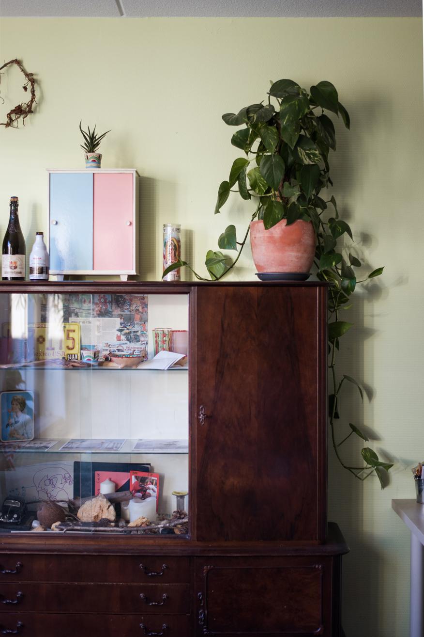 Pflanze vor grüner Wand auf einem alten, braunen Vintage-Schrank