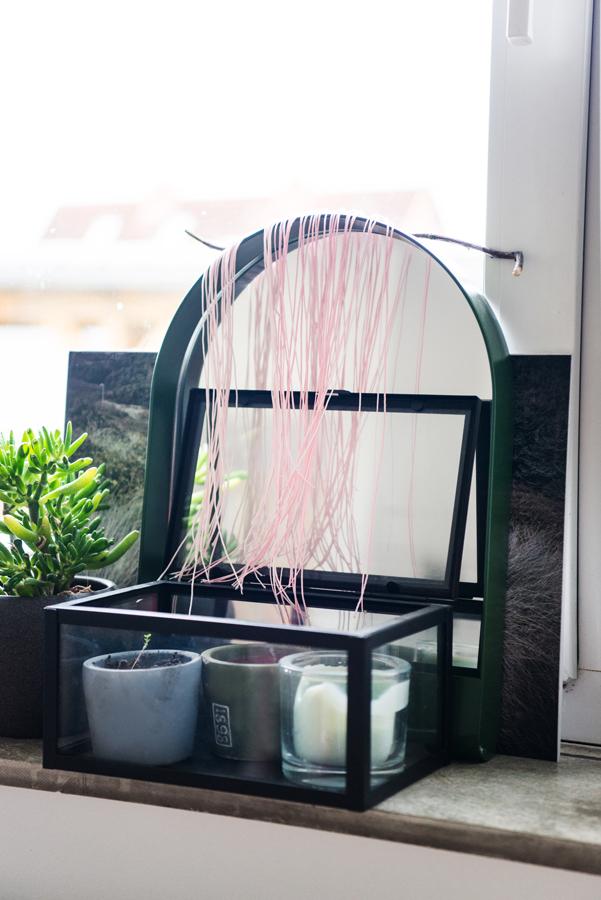 Kleiner grüner Spiegel mit Sukkulenten in einem Gewächshauskasten davor