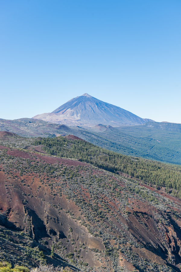 Im Nationalpark El Teide