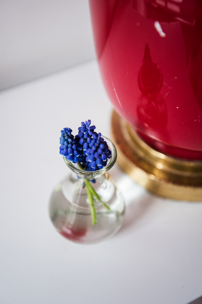 Blaue Hyazinthen in einer kleinen Glasvase