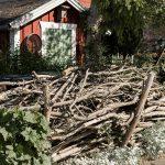 Totholzhecke Trockenholzhecke im Garten anlegen