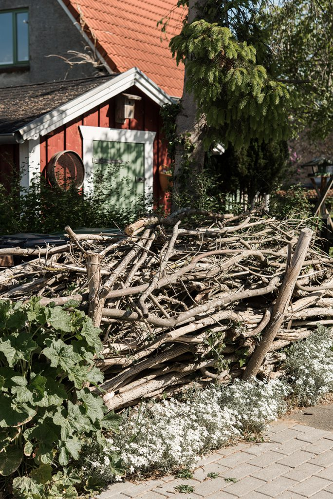 Trockenholzhecke Benjeshecke Totholzhecke im Garten anlegen mit Silberkraut bepflanzen