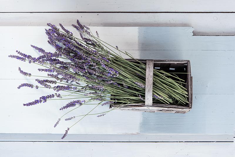 Lavendel im Korb auf hellblauer Holzplatte Flatlay