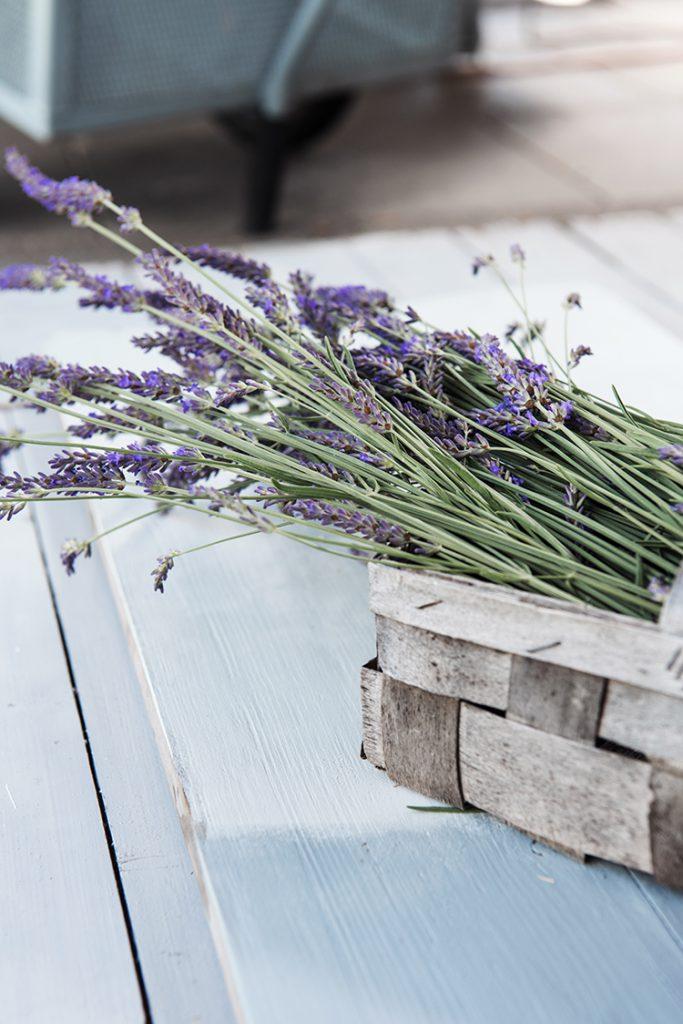 Lavendel im Korb auf hellblauer Holzplatte